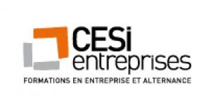 ecole CESI Entreprises Nancy