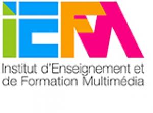 IEFM 3D