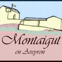 Association des Amis du Château de Montaigut