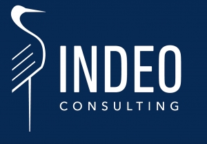 INDEO Consulting