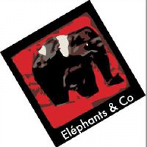 Groupe Eléphants & Co