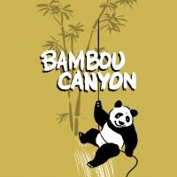 bambou-canyon.com