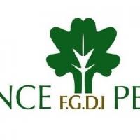 FGDI PEREIRE