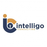 Intelligo Consulting