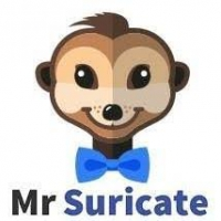 FFBV MR SURICATE