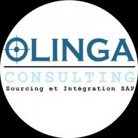 OLINGA CONSULTING