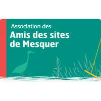 Amis des sites de Mesquer