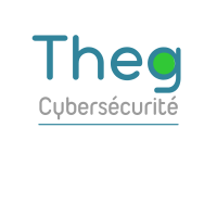 THEG - Cyber Risk & Security Consulting Services