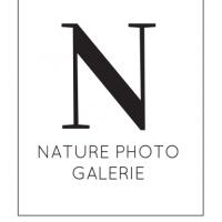 Nature Photo Galerie